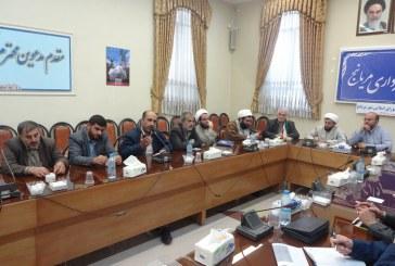 جلسه کمیسیون فرهنگی شورای شهر با فعالان فرهنگی مریانج