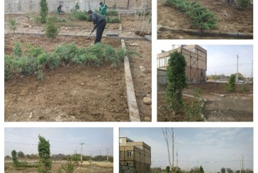 کاشت انواع بوتههای گیاهی در بوستان ورزش